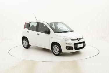 Fiat Panda Easy usata del 2016 con 23.247 km
