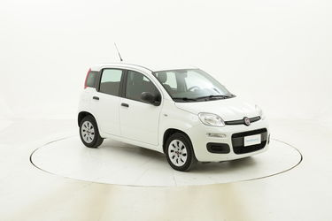 Fiat Panda Pop usata del 2016 con 43.607 km