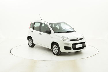 Fiat Panda usata del 2016 con 52.976 km
