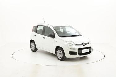 Fiat Panda usata del 2016 con 39.131 km