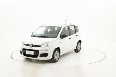 Fiat Panda usata del 2016 con 50.075 km