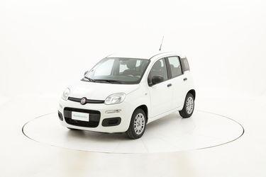 Fiat Panda usata del 2016 con 24.064 km