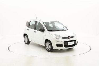 Fiat Panda usata del 2016 con 30.953 km
