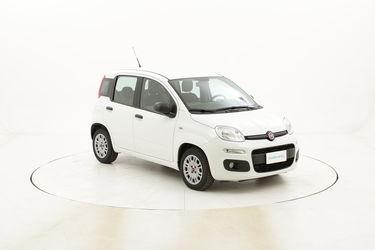 Fiat Panda Easy usata del 2016 con 55.408 km