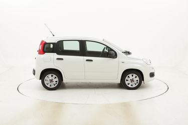 Fiat Panda Easy usata del 2016 con 55.401 km