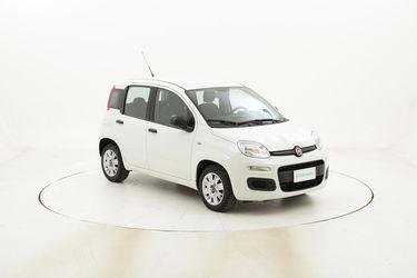 Fiat Panda Easy usata del 2017 con 26.957 km