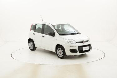 Fiat Panda Easy usata del 2016 con 25.256 km