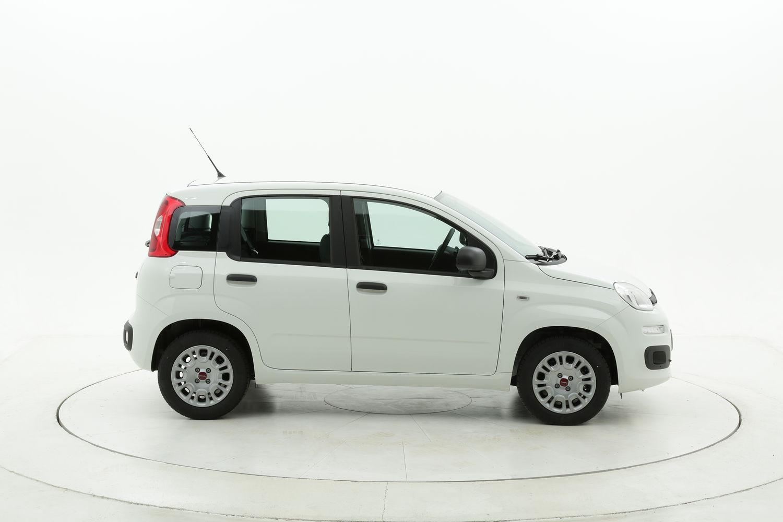 Fiat Panda Easy km 0 diesel bianca