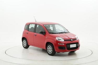 Fiat Panda usata del 2020 con 4.298 km