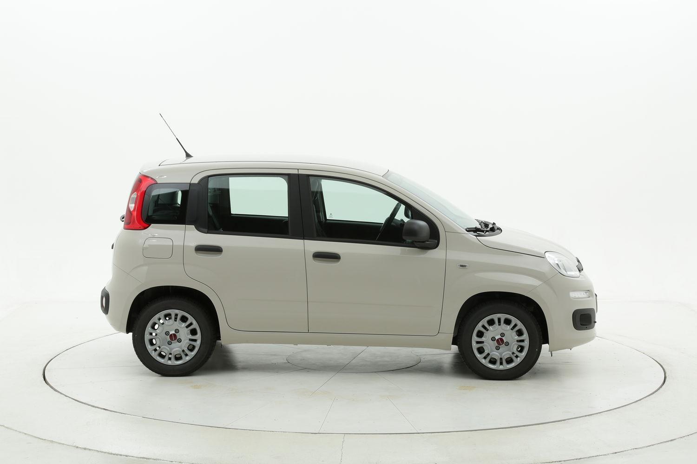 Fiat Panda Easy km 0 diesel beige
