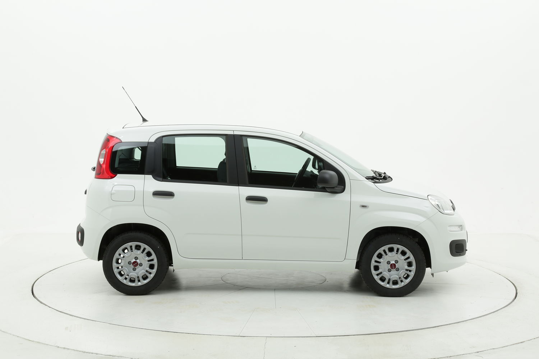 Fiat Panda benzina bianca a noleggio a lungo termine