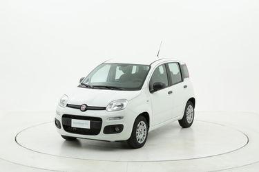 Fiat Panda benzina  a noleggio a lungo termine