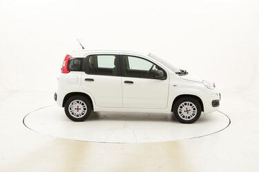 Fiat Panda Easy usata del 2017 con 30.024 km