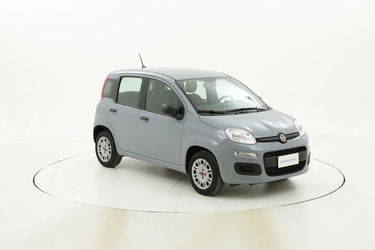 Fiat Panda Easy - MY 2020 usata del 2020 con 4.299 km