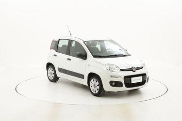 Fiat Panda usata del 2017 con 31.520 km