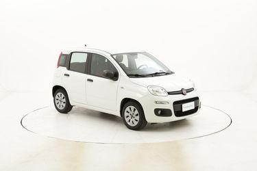 Fiat Panda Pop usata del 2014 con 55.717 km