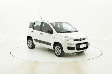 Fiat Panda usata del 2016 con 11.954 km