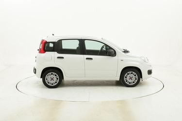 Fiat Panda Easy usata del 2017 con 35.220 km