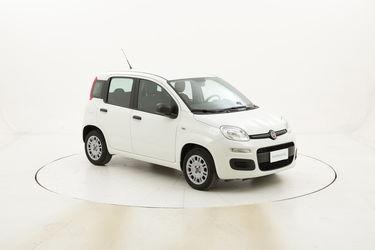 Fiat Panda Easy usata del 2016 con 36.356 km