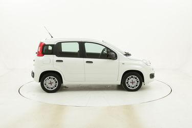 Fiat Panda Easy usata del 2016 con 33.573 km